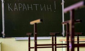 Мониторинг организации дистанционного обучения школьников в России проведетОНФ