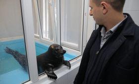 Михаил Романов передал лекарства подопечным Центра изучения и сохранения морских млекопитающих в поселкеРепино