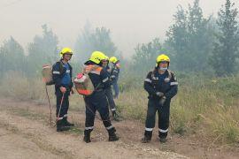 Патрулирование городских лесов Тольятти будетусилено